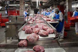کانوایر-حمل-گوشت