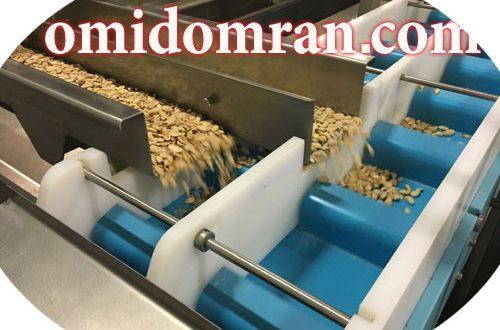 نوارنقاله/نوارنقاله جداسازی حبوبات/کانوایرخط تولید حبوبات
