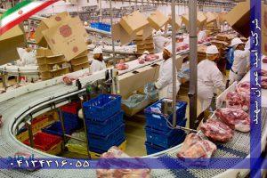 نوار نقاله برای گوشت - صنعت طیور