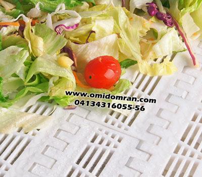 تسمه مدولار شستشوی سبزیجات