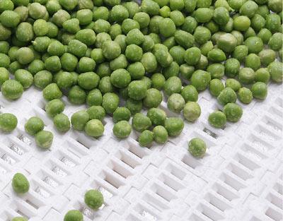 تسمه مدولار سبزیجات