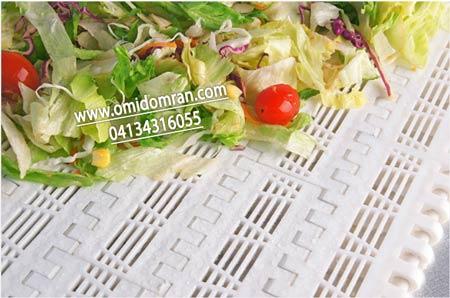 تسمه مدولار خشک کن سبزیجات