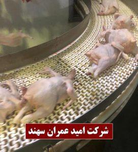 تسمه اسپیرال صنایع غذایی