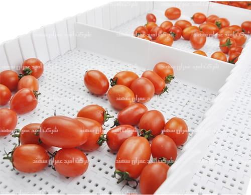 تسمه-مدولار-سورتینگ-گوجه-فرنگی1-min