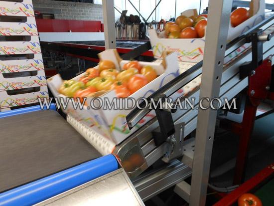 کانوایر برای صنعت مواد غذایی